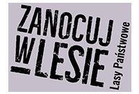 #Zanocujwlesie